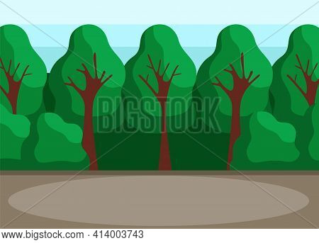 Back Yard With High Trees. Park, Glade Or Backyard Forest For Hanging Out And Relaxing In Nature