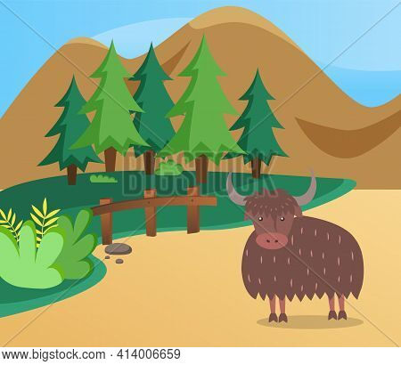 Wild Animal In Nature. Bison With Thick Hair And Long Horns. Horned Representative Of Fauna