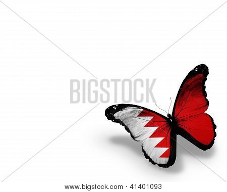 Bahraini Flag Butterfly, Isolated On White Background