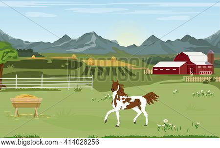 Vector Illustration. Rural Landscape Panorama. A Horse Stands Behind A Wooden Fence In A Pasture Wit