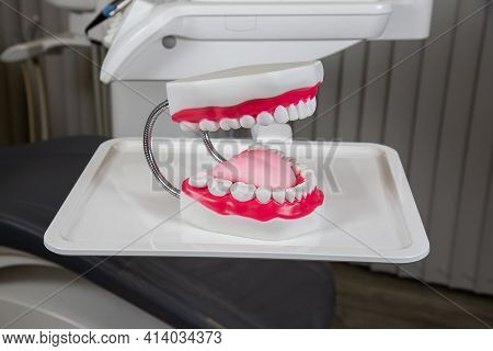 Plaster Mock-up Of The Jaw With Gums And Teeth On The Table. Artificial Jaw, Visual Aid For Dentists