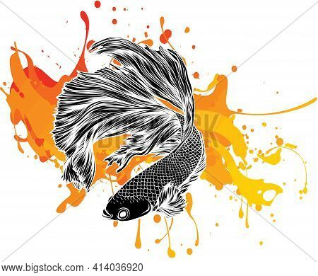 Colorful Betta Fish With Green Water Splash Vector Illustration.