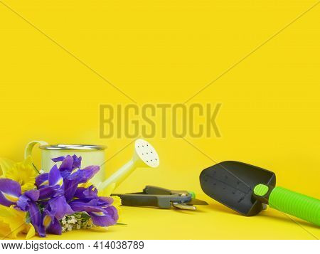 Garden And Horticulture Banner With Copy Space. Seedling Flower, Watering Can And Gardening Tools On