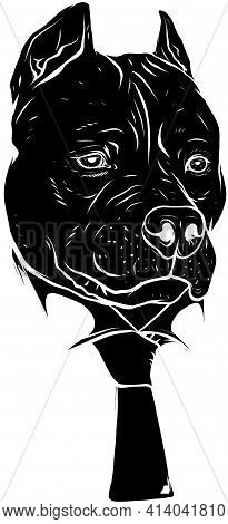 Black Silhouette Of Pitbull Head With Necktie Vector Illustration Design