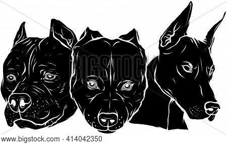 Black Silhouette Of Heads Of Dogs Pitbull Dobermann Bulldog Vector