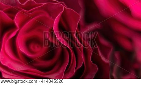 Abstract Red Background With Floral Motives. Rose Petals Macro Photo Top View. Rose Petals Texture.
