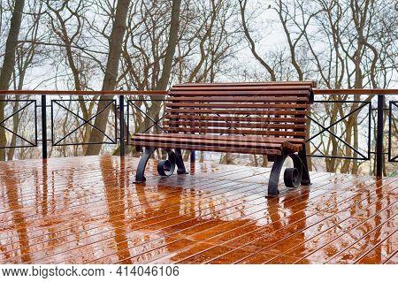 Empty Bench In The Rain At A Park. Kiev, Ukraine