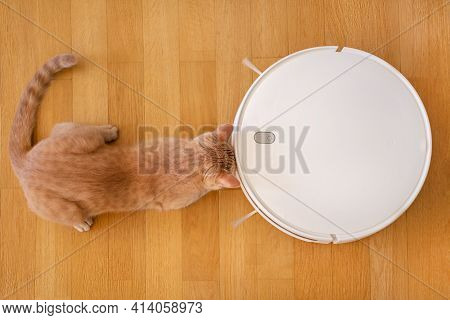 Flat Lay, A Robot Vacuum Cleaner Works, Removes Rubbish On The Floor. Wooden Parquet. He Is Interest