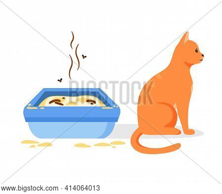 Cat Not Using Dirty Litter Box. Wrong Way To Maintain Cat Toilet. Pet Toilet Hygiene Concept. Flat V