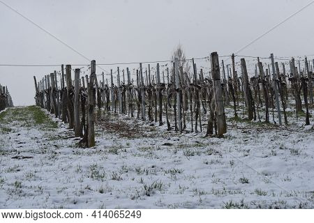 Snow And Onset Of Winter