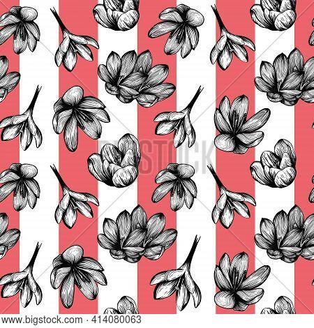 Saffron Seamless Pattern . Crocus Flower Pattern. Hand-drawn Vector Illustration