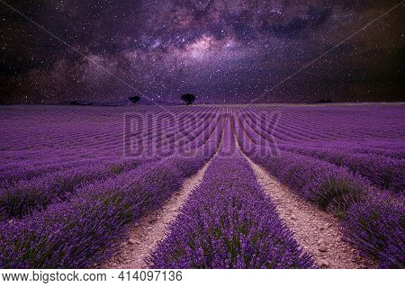 Amazing Nature Landscape. Stunning Night Landscape, Milky Way Sky With Lines Of Blooming Lavender Me