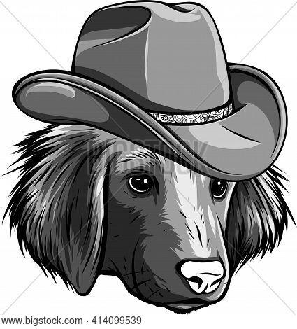 Design Of Gangster Dog With Fedora Hat Vector Illustration