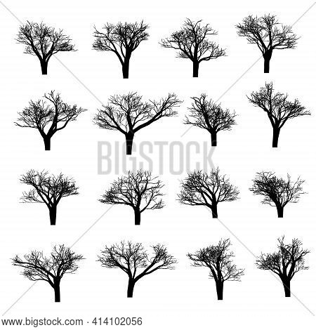 Set Of Vector Trees. Vector Tree Icon. Tree Logo. Vector Tree Design. Fruit Trees And Fruit Trees. W