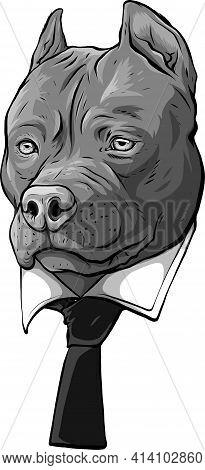 Design Of Pitbull Head With Necktie Vector Illustration