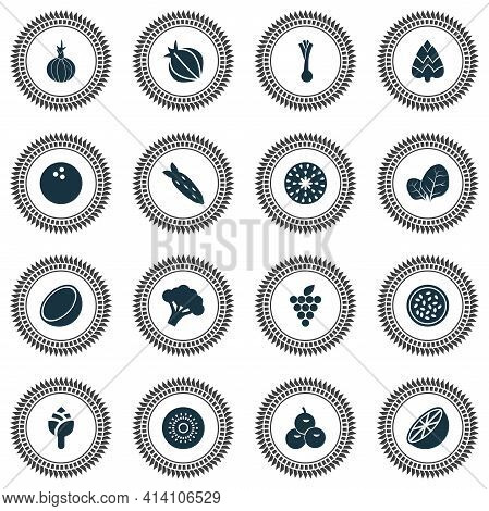 Fruit Icons Set With Fig, Coco, Cocoanut And Other Coco Elements. Isolated Vector Illustration Fruit
