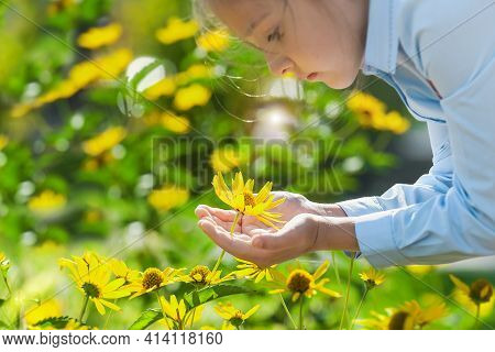 Yellow Flower In The Hands Of Child. World Environment Day. Earth Day. Eco-friendly And Pure Energy