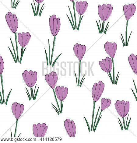 Vector Floral Seamless Pattern Background With Crocus Flowers