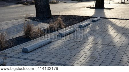 Parking In The Parking Lot At The Flowerbed In The Shape Of A Lane With Ornamental Dry Grasses. Stop