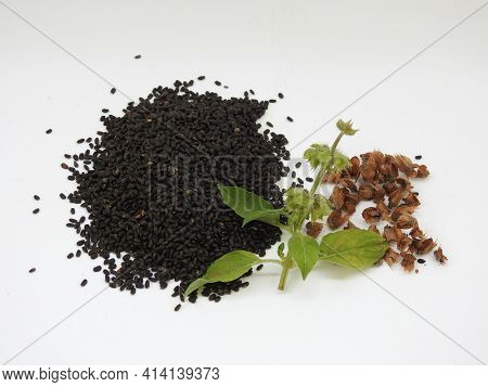 Closeup Of Chia, Salvia Hispanica Pile Of Seeds With Flowers On White Background