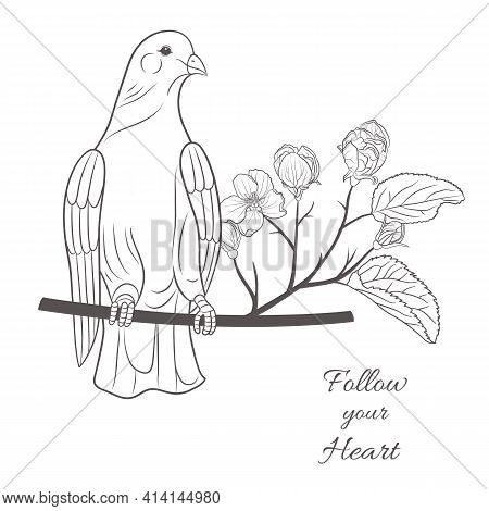 Vector Graphic Illustration With Pigeon And Blooming Tree On A White Background-01