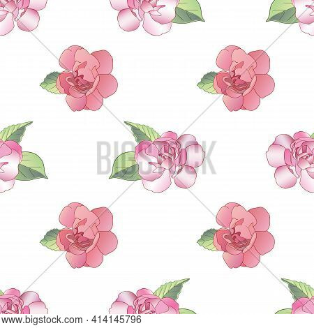 Vector Floral Seamless Pattern With Beautiful Pink Balzamin Flowers On A White Background