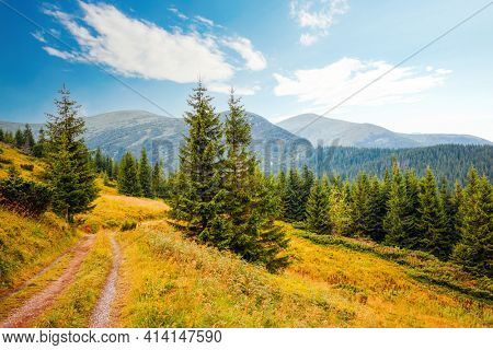 Splendid summer scene of mountains on a sunny day. Location place Carpathian mountains, Ukraine, Europe. Photo of nature concept. Perfect summertime wallpaper. Discover the beauty of earth.