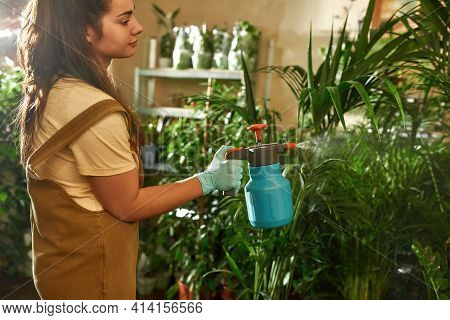 Young Girl In Overalls Caring For A Green Plantation In The Garden. Home Garden Concept. Gardener St