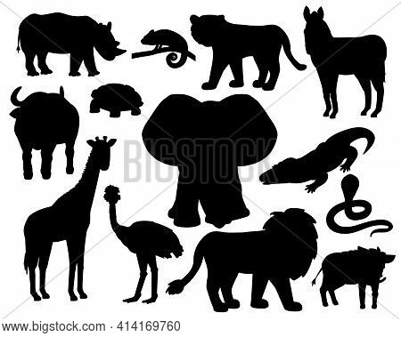 Set of Savannah animals silhouettes on white background. Tiger, lion rhinoceros, common warthog, African buffalo, tortoise chameleon zebra, ostrich, elephant, giraffe, crocodile, cobra