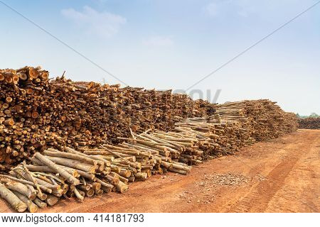 A Pile Of Stacked Firewood, Prepared For Heating The House, Firewood Harvested For Heating In Winter