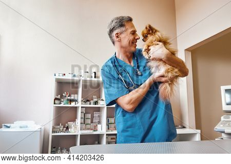 My Best Part Of Work Middle Aged Positive Vet In Work Uniform Talking With Small Ginger Dog While St