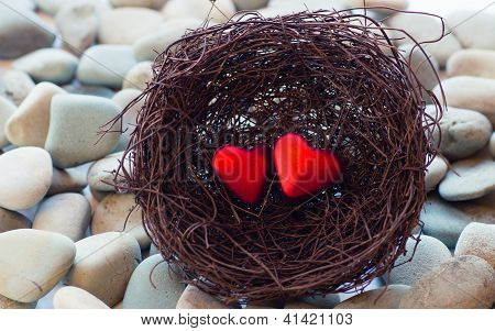 Hearts In A Nest