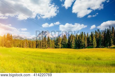 Awesome mountain valley on a sunny summer day. Location Durmitor National park, Zabljak, Montenegro, Balkans, Europe. Summer trip to exotic places. Photo wallpaper. Discover the beauty of earth.