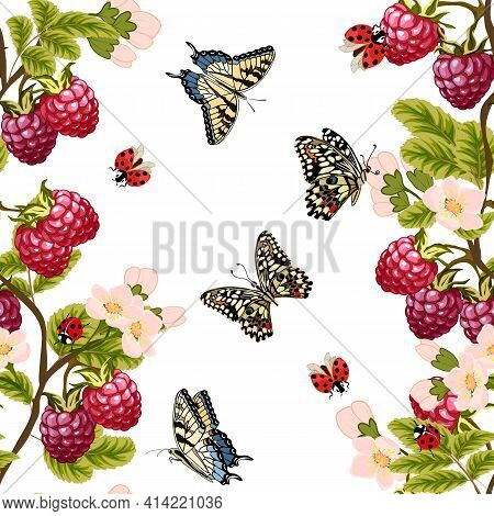 Pattern With Raspberries And Butterflies.ripe Raspberries And Multicolored Butterflies On A White Ba