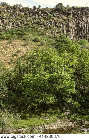 Canyon Basalt Wall Near The Shore Of The Azat River Among The Trees And Stones In The River Flowing