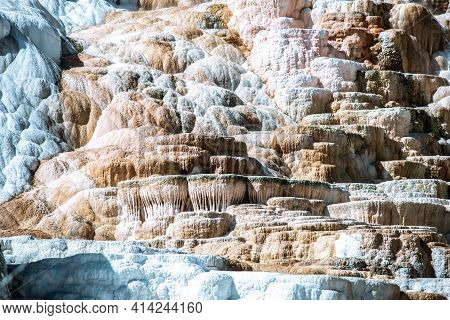 Travertine Terraces, Mammoth Hot Springs In Yellowstone