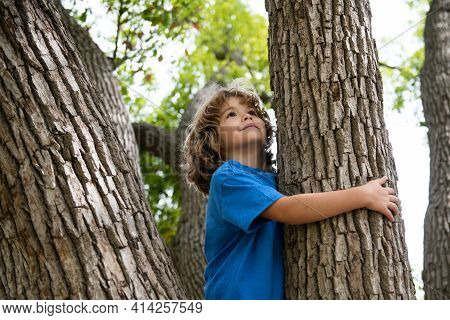 Young Boy Hugging A Tree Branch. Little Boy Kid On A Tree Branch. Child Climbs A Tree