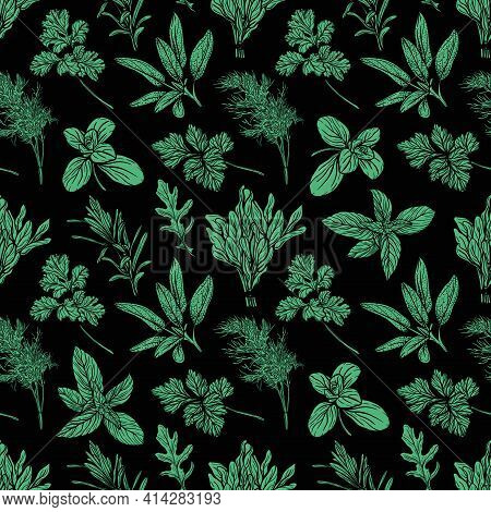 Italian Herbs Seamless Pattern. Provencal Condiments And Herbs Pattern.