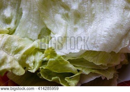 Macro Photo Vegetable Green Salad Lettuce. Texture Green Fresh Salad Lettuce.