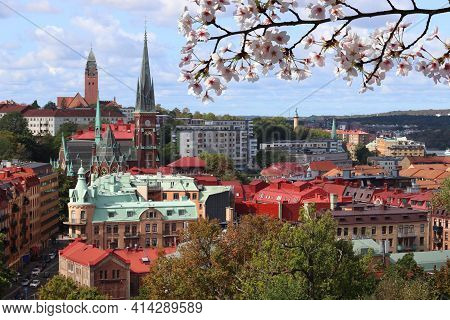 Spring In Gothenburg City In Sweden. Gothenburg Cityscape With Olivedal District. Cherry Blossoms Sp
