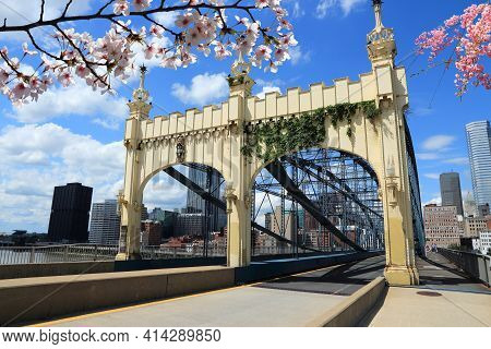 Spring In Pittsburgh City, Pennsylvania. Pittsburgh Skyline With Cherry Blossoms.