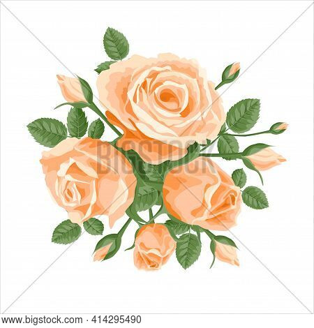 A Bouquet Of Pink Ivory Roses. Vector Decoration, Illustration With Roses And Leaves. For Postcards,