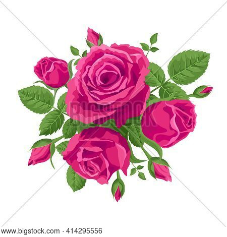 A Bouquet Of Intense Pink Roses. Vector Decoration, Illustration With Roses And Leaves. For Postcard