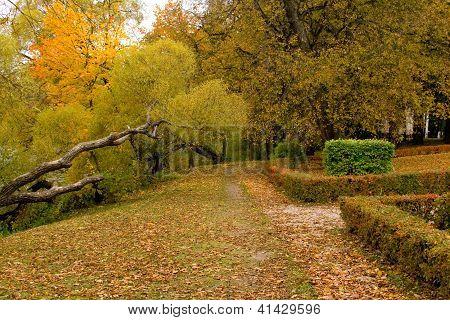 Autumn Road In Latvia