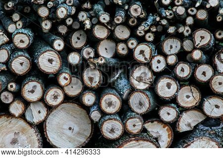 Pile of wood ready for winter