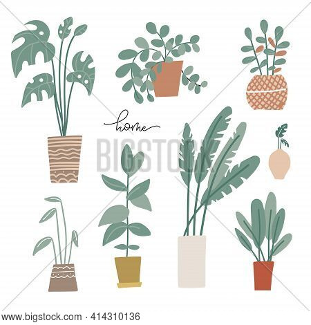 Potted Plants Set In Scandinavian Style. Palms And House Plants. Hand Drawn Vector Illustration. Set