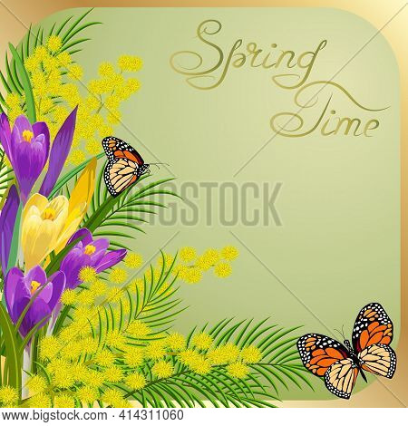 Illustration With Mimosa And Snowdrops.mimosas And Snowdrops On A Colored Background In Vector Illus