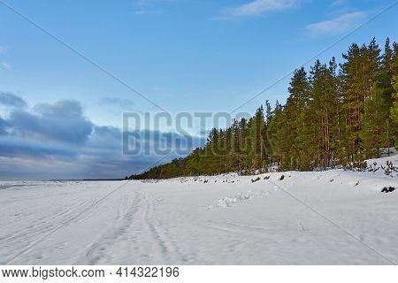 Beautiful Winter Landscape With White Snow Drifts, With Green Coniferous Forest And Blue Cloudy Sky