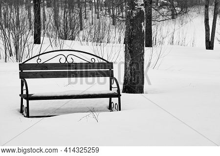 One Empty Old Close-up Bench In A Snowy Winter Park Of Monochrome Tone