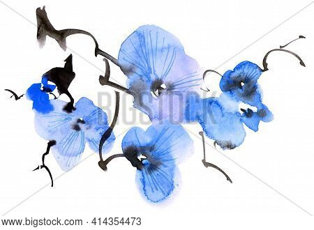 Watercolor And Ink Illustration Of Blossom Tree Branch With Blue Flowers And Buds. Oriental Traditio